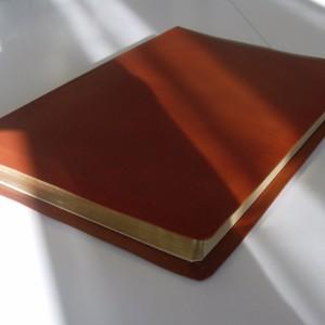 Bibeln 1917 ljusbrun