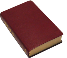 Folkbibeln storformat konstskinn