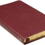 Folkbibeln slimeline konst röd