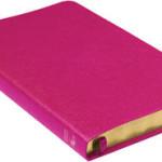 Folkbibeln slimeline konst rosa