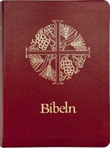 Bibel 2000 mjukt konstskinn